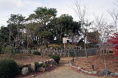 Shogun_zuka